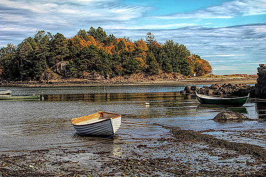 Fall colors by the seashore by Jeff Folger