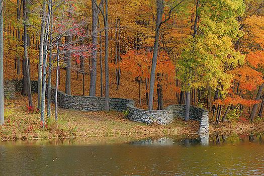 Fall Day III by Dawn Wayand