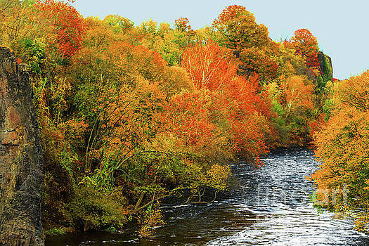 Regina Geoghan - Fall Foliage Passaic River N.J.