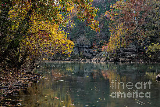 Fall in Arkansas by Joe Sparks