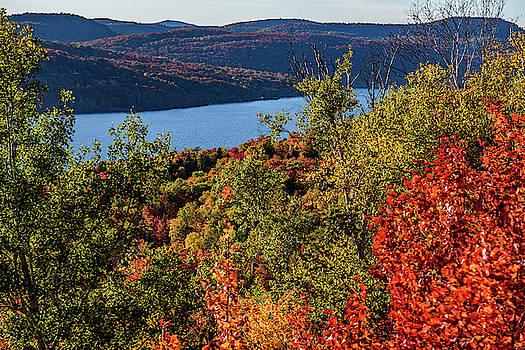 Fall in Canada I by Dawn Wayand