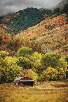 Fall in Utah by Marybeth Kiczenski
