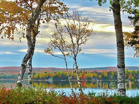 Fall look by Brenda Ketch