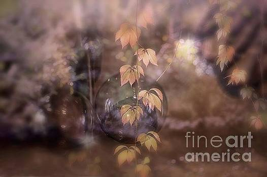 Fall Magic by Mary Lou Chmura