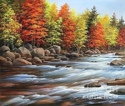 Fall Mountain River by Varvara Harmon