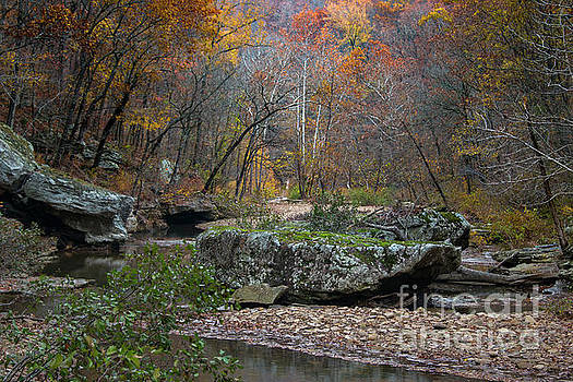 Fall on the Kings River by Joe Sparks