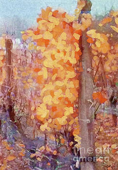 Sharon Williams Eng - Fall on the Vine