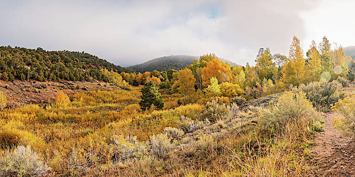 Fall Panorama of Aspens and Cottonwoods at Twomile Reservoir Dale Ball Trails - Santa Fe New Mexico by Silvio Ligutti