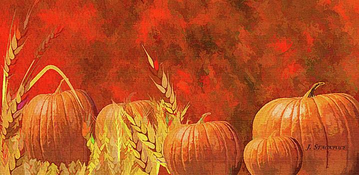 Fall Pumpkins by Jennifer Stackpole