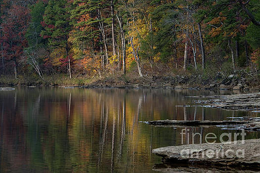 Fall Reflections by Joe Sparks