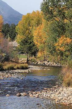 Fall River by Teresa Thomas