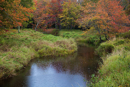 Cliff Wassmann - Fall River with Raindrops