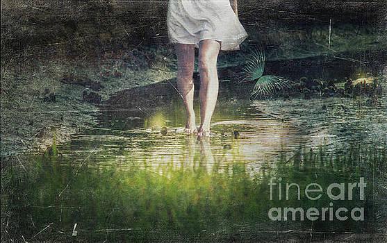 Fallen by Kelley Freel-Ebner