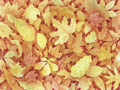 Fallen Leaves by Lori Taylor