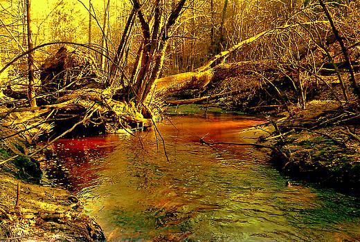 Henryk Gorecki - Fallen tree
