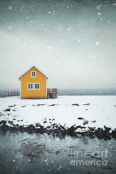 Falling Softly by Evelina Kremsdorf