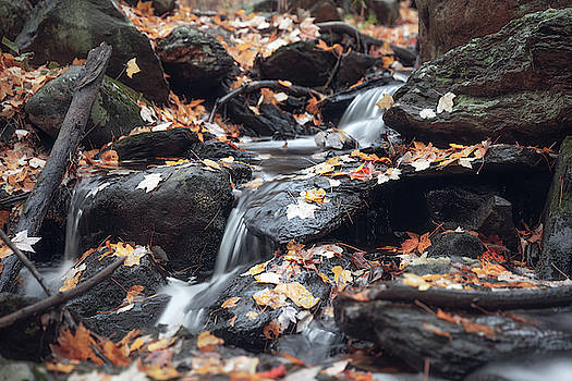 Falls in Fall by Brian Hale