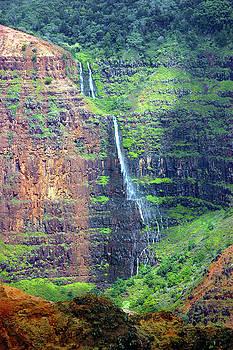Susan Burger - Falls in Waimea Canyon