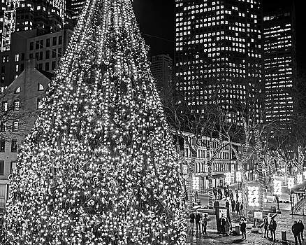 Toby McGuire - Faneuil Hall Christmas Tree 2018 Boston MA Black and White