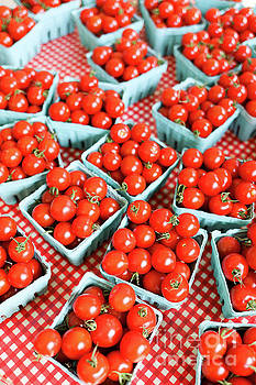 Farm Fresh Cherry Tomatoes by Edward Fielding