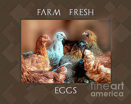 Farm Fresh Eggs by Linda Troski