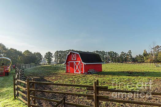 Farm on a sunny day by Viktor Birkus