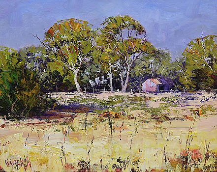 Farm Sheds Whittlesea  by Graham Gercken