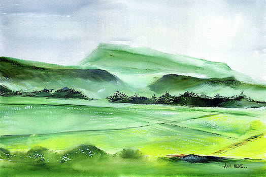 Farmland 2 by Anil Nene
