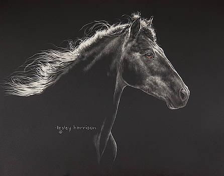 Faroan by Lesley Harrison