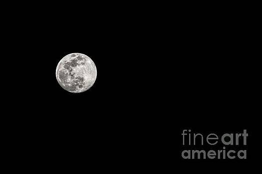 February Full Worm Moon by Jon Burch Photography
