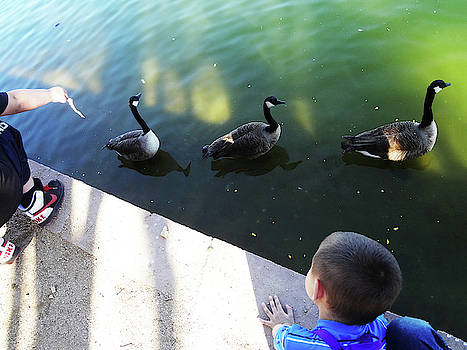 Feeding Time by Bruce Iorio