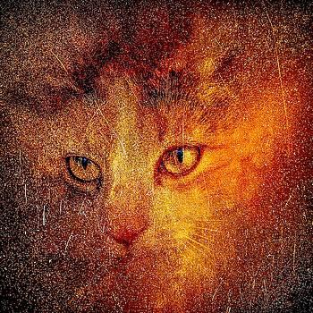 Feline Spirits by Christina Ford