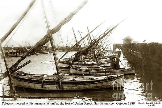 California Views Mr Pat Hathaway Archives - Feluccas at Fisherman