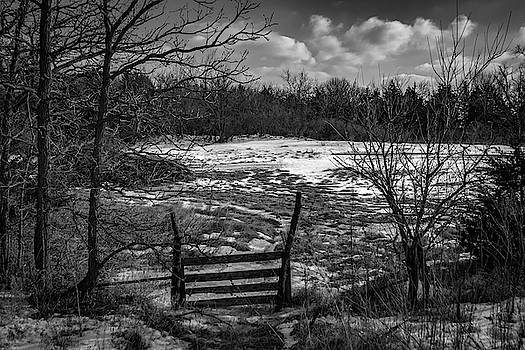 Fence Line by Ray Congrove