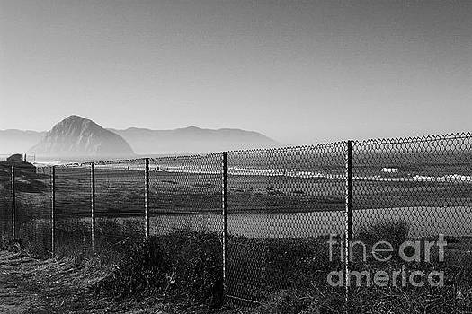 Fenced In by Katherine Erickson