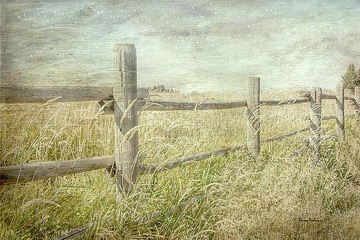 Fenced In by Ramona Murdock
