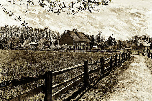 Ferndale Barn by Rick Lawler