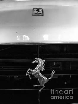 Horse car by WaLdEmAr BoRrErO