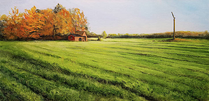 Field Aglow by Susan E Hanna