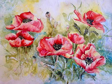 Field Of Poppies by Sarah Guy-Levar