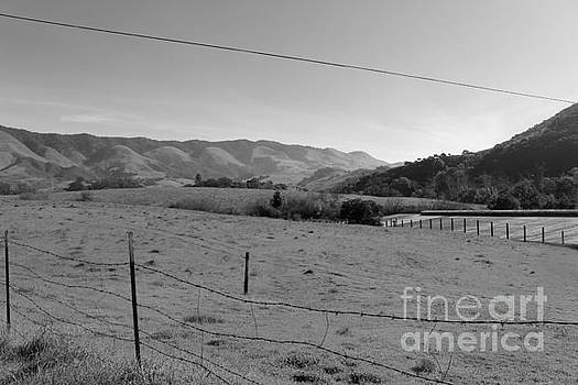 Fields and Mountains by Katherine Erickson