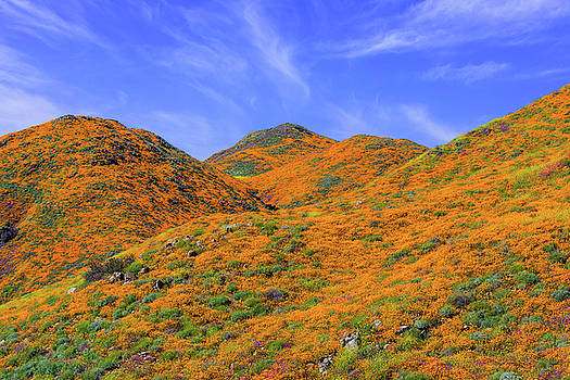 Gold Hills by Brian Knott Photography