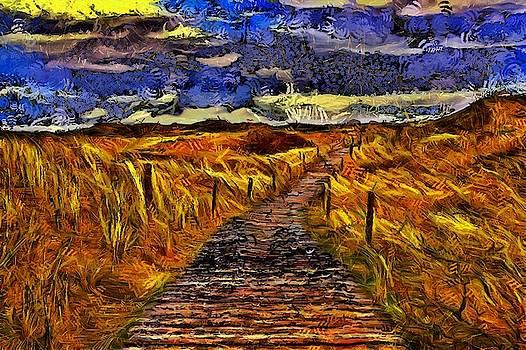 Fields Of Gold by Harry Warrick