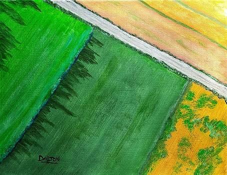 Fields of Green by George Dalton