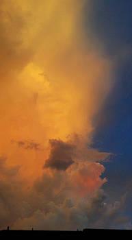 Fiery July Sunset  by Ally White