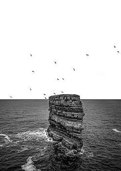 Fifteen Birds Above Dun Briste by Alan Campbell