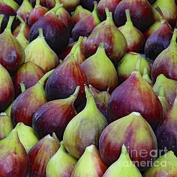 Figs by PJ Boylan