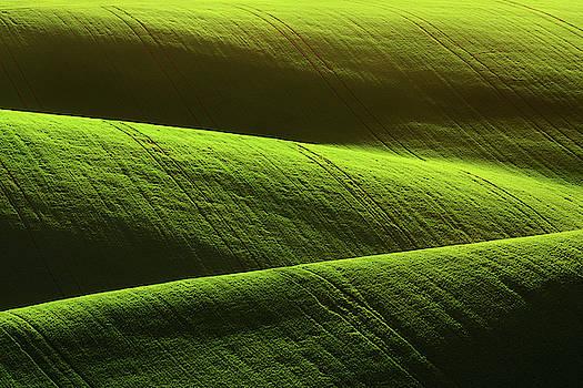 Fileds of green by Marek Ondracek