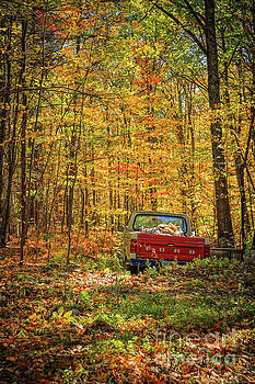 Edward Fielding - Final Resting Place - Old Ford in the Forest