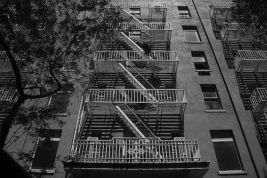 Fire escape and tree in black and white by Alan Goldberg